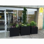 planters at Langley Hospital