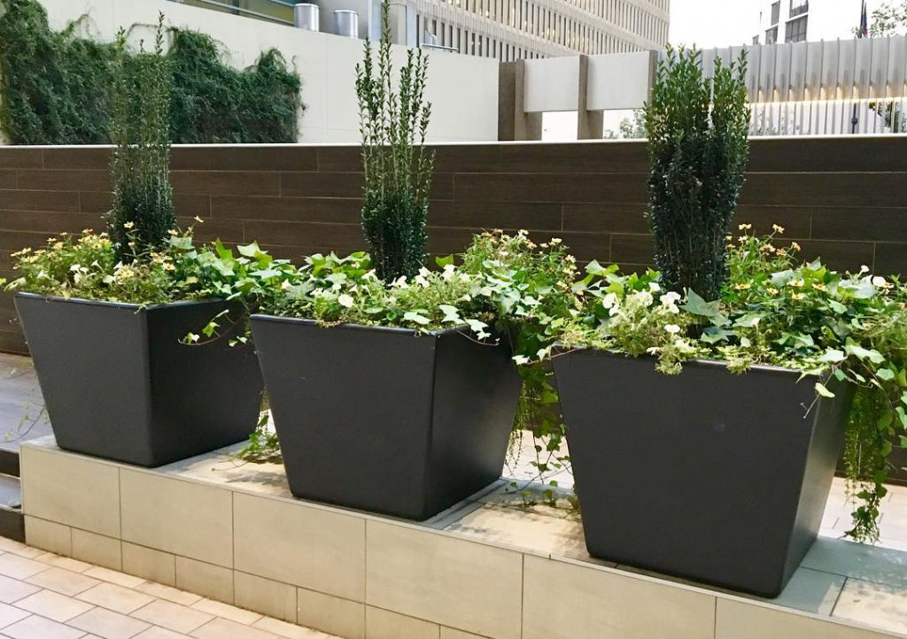 Large Planters Can Transform a Porch: Here's How to Do It on