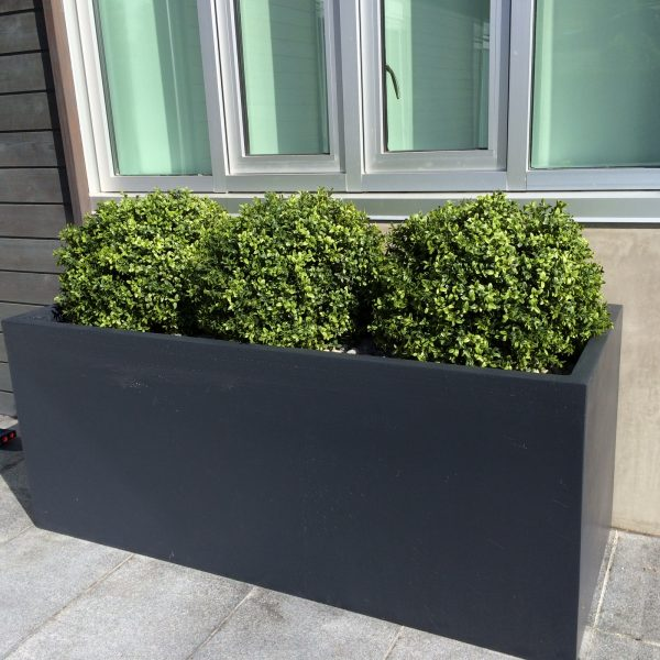 Artificial boxwood shrub