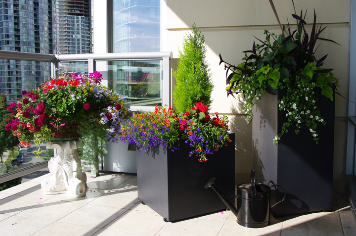 Patio off bedroom. Elemental Garden Design.