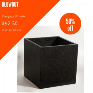12 inch FG cube