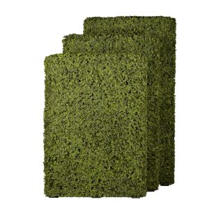 Boxwood Panel 3 sizes Sized