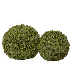 Boxwood Sphere 2 sizes Sized