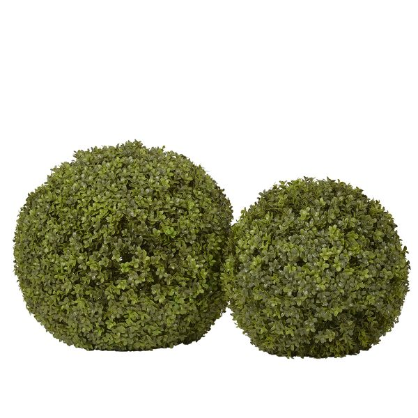 Boxwood Sphere 2 sizes Sized