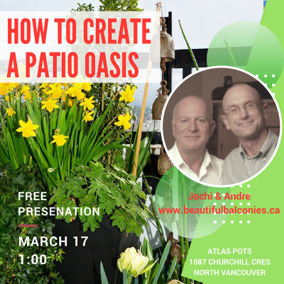 How to creat a patio oasis